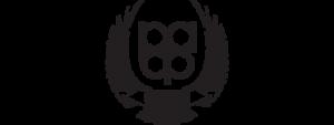 Logo_RAF3